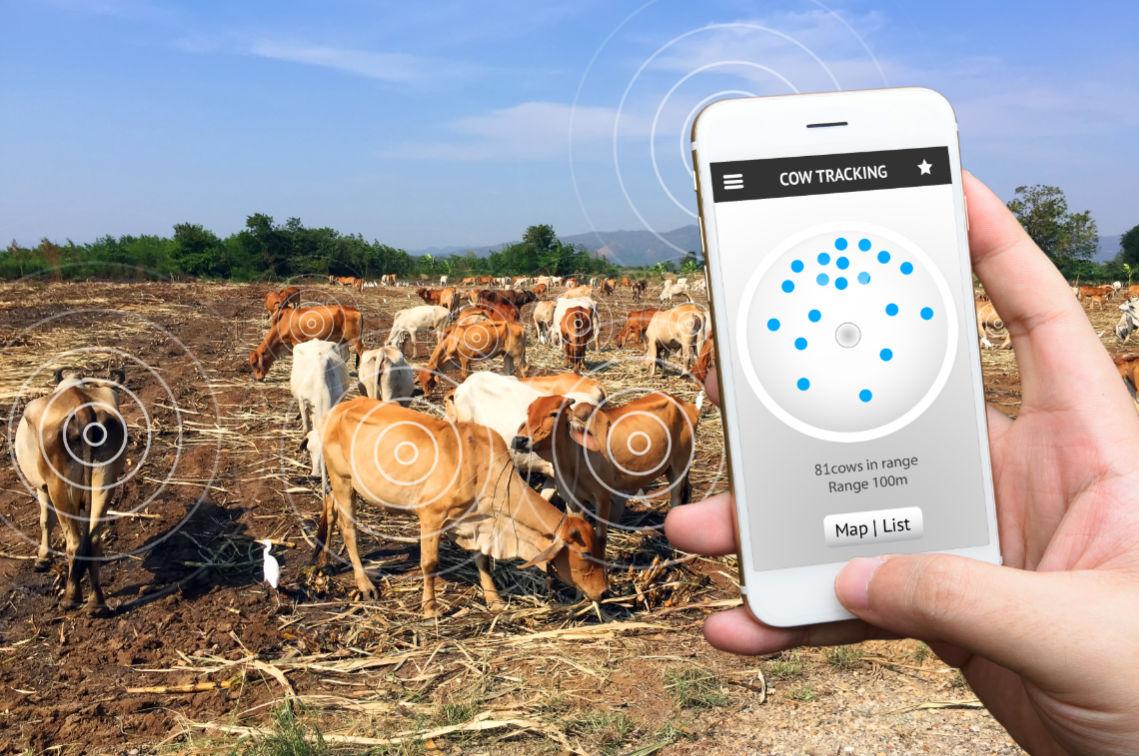 tecnologia-ganaderia